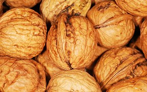 walnut-101462__180