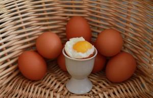 eggs-750847_960_720